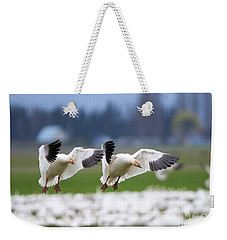 Tandem Landing  Weekender Tote Bag by Mike Dawson