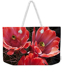 Weekender Tote Bag featuring the photograph Tangerine Cactus Flower by Phyllis Denton