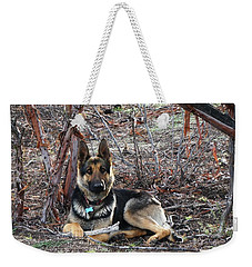 Weekender Tote Bag featuring the photograph Tara by Julia Ivanovna Willhite