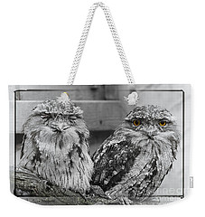 Weekender Tote Bag featuring the photograph Tawney Frogmouths by Chris Armytage