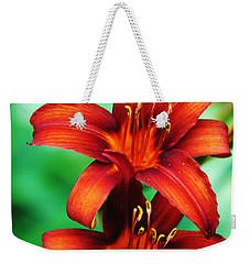 Tawny Beauty Weekender Tote Bag