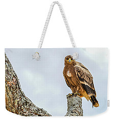 Tawny Eagle Weekender Tote Bag
