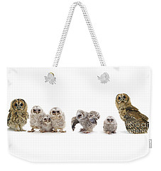 Tawny Owl Family Weekender Tote Bag