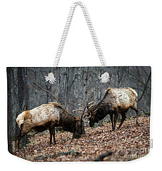 Weekender Tote Bag featuring the photograph Teaching by Andrea Silies