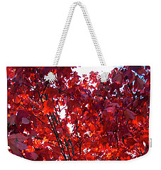 Weekender Tote Bag featuring the photograph Tennessee Trees 3 by Jeanne Forsythe