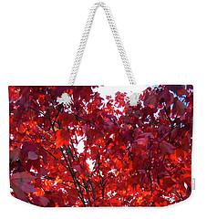 Tennessee Trees 3 Weekender Tote Bag