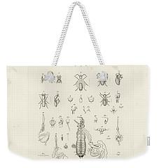 Termites, Macrotermes Bellicosus Weekender Tote Bag