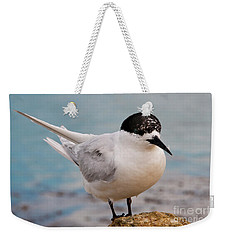 Weekender Tote Bag featuring the photograph Tern 1 by Werner Padarin