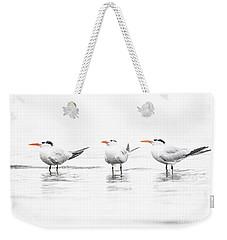 Tern's In Triplicate  Weekender Tote Bag