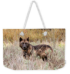 Teton Wolf Weekender Tote Bag by Steve Stuller