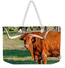 Texas Hill Country Longhorn 9962a Weekender Tote Bag