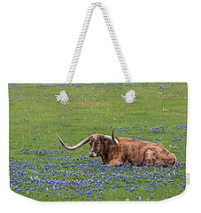 Weekender Tote Bag featuring the photograph Texas Longhorn And Bluebonnets by Robert Bellomy