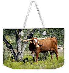 Weekender Tote Bag featuring the photograph Texas Longhorn Steer by David Morefield