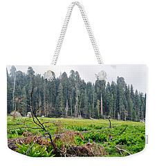 Weekender Tote Bag featuring the photograph Tharps Log Meadow by Kyle Hanson