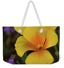 Weekender Tote Bag featuring the photograph That Golden Spring Glow  by Saija Lehtonen
