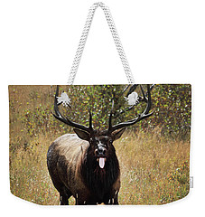 Weekender Tote Bag featuring the photograph That Moment When by Shane Bechler