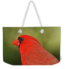 Weekender Tote Bag featuring the photograph That Smiling Face by Kerri Farley
