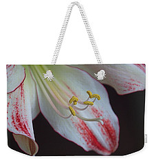 That Touch Of Pink Weekender Tote Bag