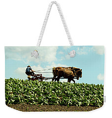 The Amish Farmer With Horses In Tobacco Field Weekender Tote Bag