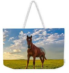 The Appy Weekender Tote Bag
