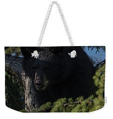 the Bear Weekender Tote Bag by Rod Wiens