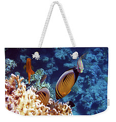 The Best Of The Red Sea Weekender Tote Bag