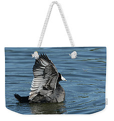 Weekender Tote Bag featuring the photograph The Big Flap by Fraida Gutovich