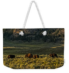 Weekender Tote Bag featuring the photograph The Bison Rut In Yellowstone by Yeates Photography