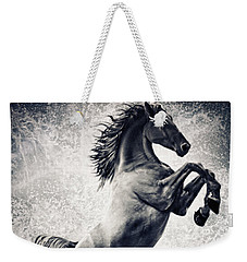 The Black Stallion Arabian Horse Reared Up Weekender Tote Bag