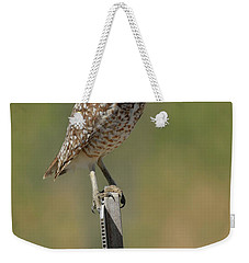 The Burrowing Owl Weekender Tote Bag