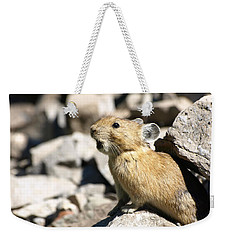 The Call Of The Pika Weekender Tote Bag