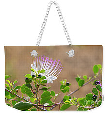 The  Caper Flower Blossoms. Weekender Tote Bag
