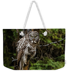 The Captivating Great Grey Owl Weekender Tote Bag by Yeates Photography