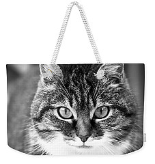 The Cat Stare Down Weekender Tote Bag