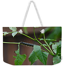 Weekender Tote Bag featuring the photograph The Caterpillar 2 by Cendrine Marrouat