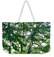 The Catskills Weekender Tote Bag