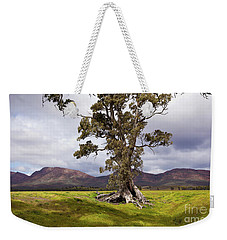 The Cazneaux Tree Weekender Tote Bag