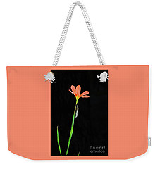 The Climb Weekender Tote Bag by Cassandra Buckley