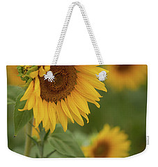 The Close Up Of Sunflowers Weekender Tote Bag