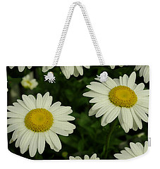 The Common Daisy Weekender Tote Bag by James C Thomas