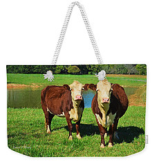 The Cow Girls Weekender Tote Bag by Sandi OReilly
