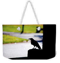 Weekender Tote Bag featuring the photograph The Crow Awaits by Karol Livote
