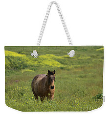 The Curious Working Horse Weekender Tote Bag
