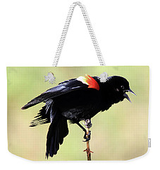 Weekender Tote Bag featuring the photograph The Dance by Shane Bechler
