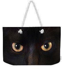 Weekender Tote Bag featuring the photograph The Dark Cat by Gina Dsgn