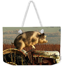 The Dream Of A Pig Weekender Tote Bag