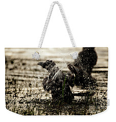 The Eastern Jungle Crow Corvus Macrorhynchos Levaillantii Weekender Tote Bag