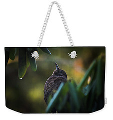 The Eurasian Blackbird Female In Spring Morning Weekender Tote Bag