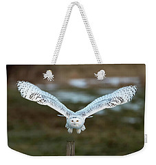 Weekender Tote Bag featuring the photograph The Eyes Of Intent by Everet Regal