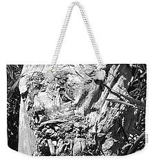 The Fallen - Unhidden Door Weekender Tote Bag